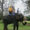 Vietnam 2012 17