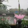 Vietnam 2012 22